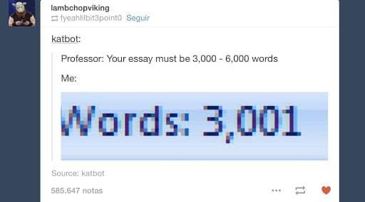 3000 word essay